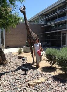 Palm Desert Giraffe